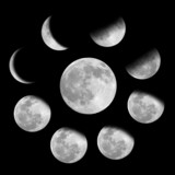 Fototapety 9 phases of the moon