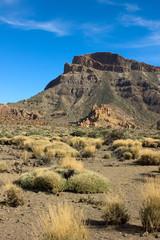 valley of Teide, Tenerife, Spain