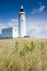 Lighthouse at  Hurst point, Hampshire England