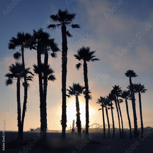 Sunset and palm trees, Santa Monica beach, Los Angeles, USA - 38126941