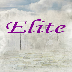 elite, geist, intellektuelle