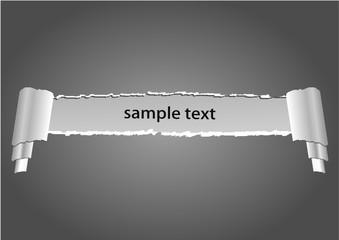 Vector design blank
