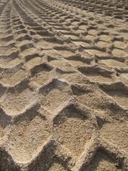 Tracks in the sand, huellas en la arena.