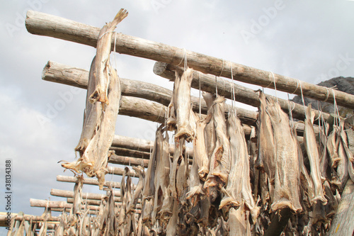 Stockfish of Å
