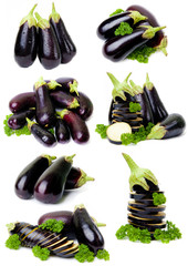 set of eggplant images