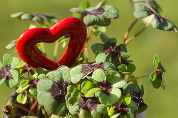 Four leaf clover and a red heart