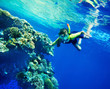 Child diving near coral reef in  blue water.