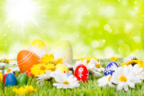 easter eggs on meadow before abstract green background