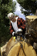 Senior man cutting tree stump with chainsaw
