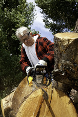 Senior man cutting tree stump with chainsaw