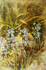 textured blue bells