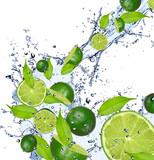 Fototapeta cytrusowych - kolor - Owoc