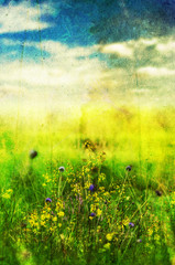 faded meadow