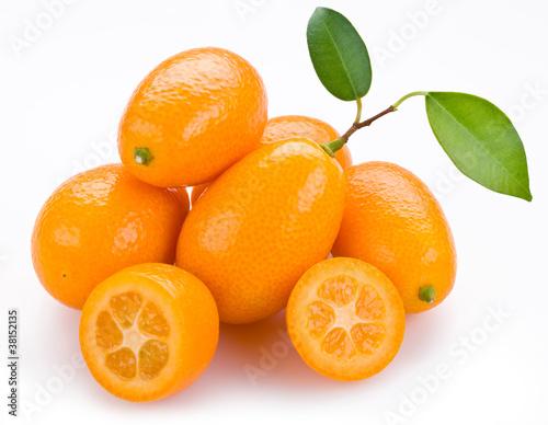 Kumquat citrus