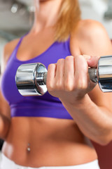 Sport - woman is exercising with barbell in gym