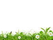 Beautiful spring background over white