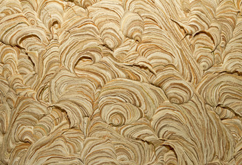 Close up image of wasp nest