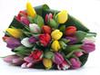 Blumenstrauß farbige Tulpen
