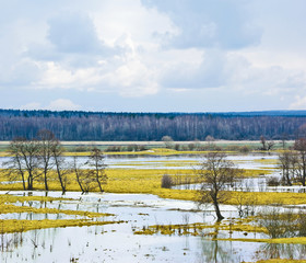 Spring flood of the river Sukhodrev. Russia