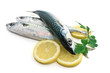 tre sgombri - three mackerel with lemon and parsley
