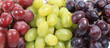 Grapes banner
