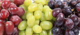 Grapes banner