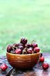 Bowl of Cherries 2