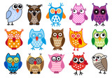 Fototapety colorful vector owls