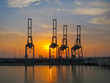 Cranes on Suez Canal at sunset