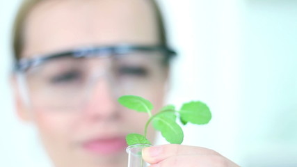 Female scientist analyzing plant in test tube