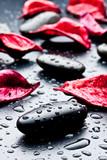 pietra nera con gocce d'acqua e petali rossi - 38199951