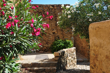 Alley with Flowers in Old Corsica Village