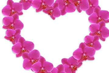 Heart made of flowers on white background