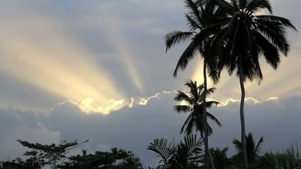 God Like Sunset