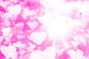 Saint Valentin Rose