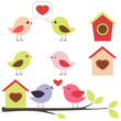 Birds in love vector set