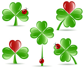 vector illustration of set of   shamrocks with four lucky leaves
