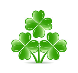 vector illustration of the three  shamrocks with four lucky leav