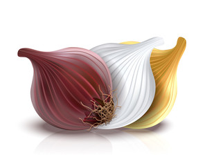 photo-realistic red, gold and white onion isolated on white