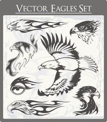 Flaming Eagle Vector Illustrations Set