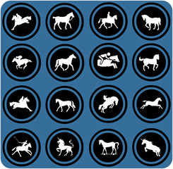 blue  signs. Horse riders silhouettes.  Horse icons.