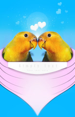 Lovebirds Love heart love you together Honeymoon