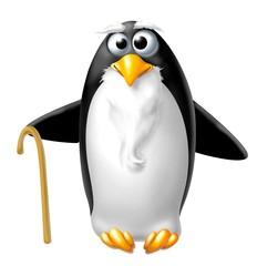 pinguino anziano