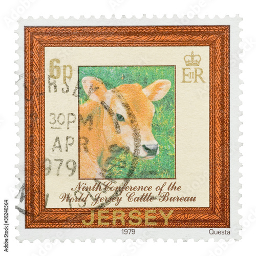 Mail stamp printed in Jersey featuring a dairy cow, circa 1979