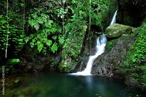 cascade in forest - 38245512