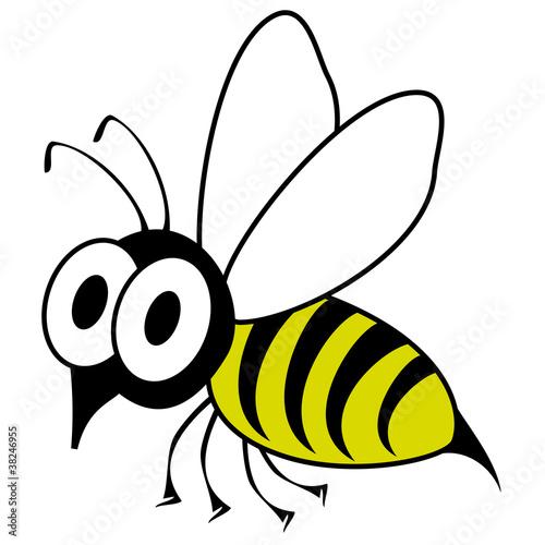 动物可爱的娱乐插图昆虫有趣的概念漫画甜的白色简单绘图翅膀艺术艺术
