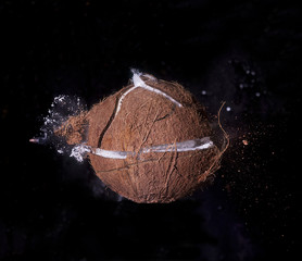 High Speed Coconut Explosion with Bullet