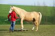 Pferd mit Trainerin 2