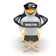 3d Penguin behind the Directors chair