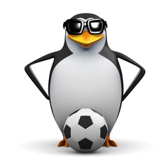 3d Penguin footballer is ready to play